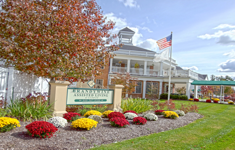brandywine living at litchfield